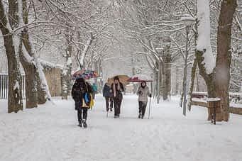 630-4-la-nieve-paralizo-estella