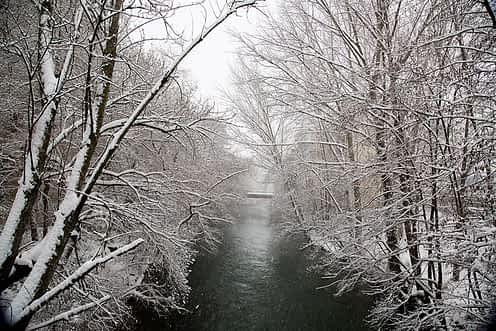nevada-estella-28-02-2018-128