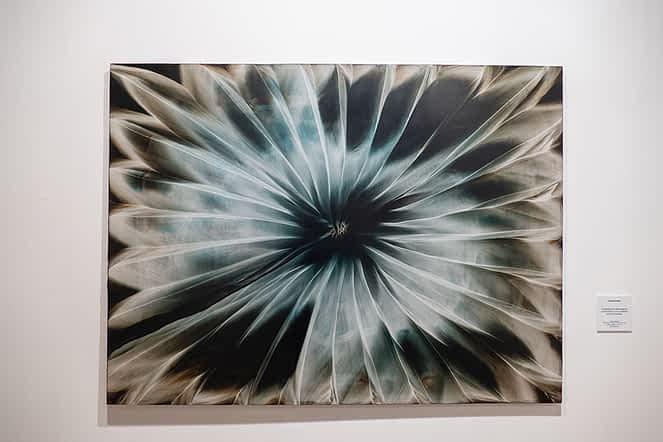 Galería fotográfica Oinez exposición
