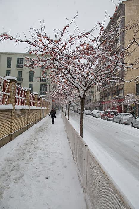 630-4c-.la-nieve-paralizo-estella