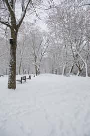 630-6a-la-nieve-paralizo-estella