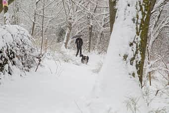 630-5a-la-nieve-paralizo-estella