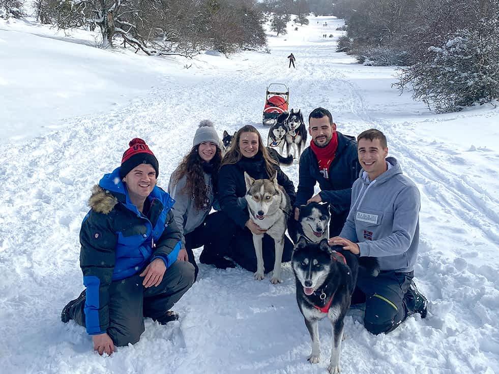 Mirada Nórdica, amigos de los Huskies