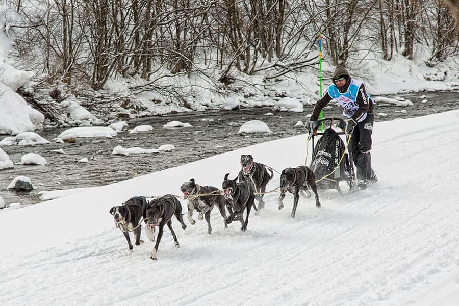 Iker Ozkoidi, del Breedna Mushing, campeón del mundo de mushing sobre nieve