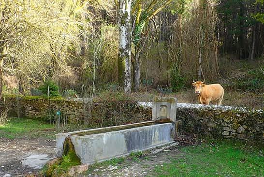 MI RUTA POR TIERRA ESTELLA - IÑAKI ETXEBERRIA - Monasterio de Iranzu-Dulantz, con variante a Urritzaga y Portutxikia - (ABÁRZUZA)