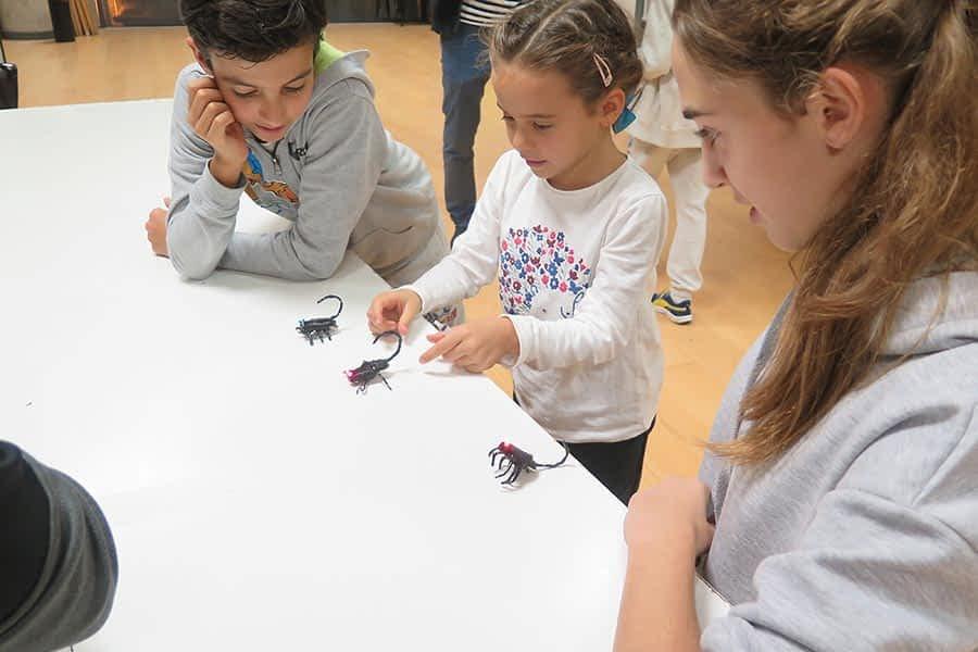 Un total 50 personas fabricaron insectos electrónicos