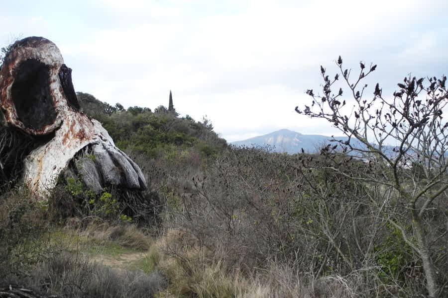 Parque de los Desvelados, en Estella