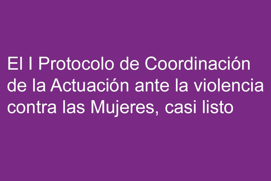 El I Protocolo de Coordinación de la Actuación ante la violencia contra las Mujeres, casi listo