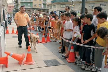 Una exhibición de perros guía, eje central de la Semana de la ONCE