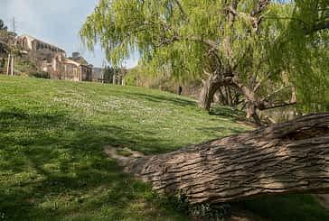 Nuevos árboles y un paseo por la orilla del río en la campa del Santo Sepulcro