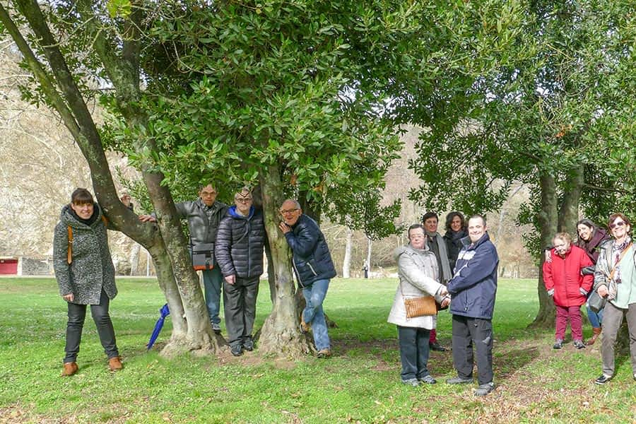 ASOCIACIONES – CLUB DE OCIO DE ANFAS – El Programa de Ocio, Pilar de la Anfas en Estella