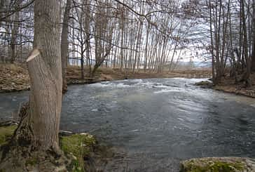 ASOCIACIONES - Salvemos el Ega - La 'ONG' del río Ega