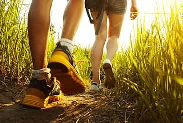 Estella acogerá el 28 de septiembre INnavar, el I Foro de Innovación Turística de Navarra