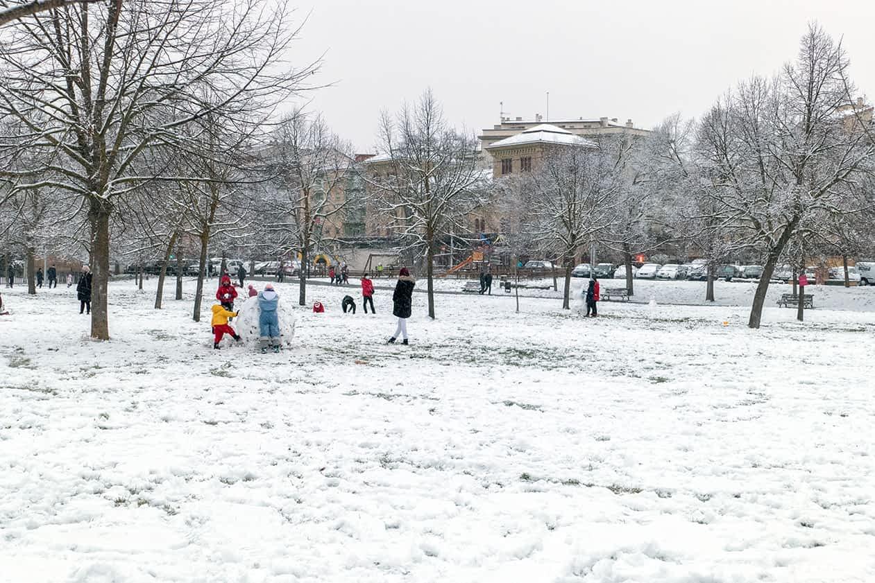 La nieve que trajo Filomena tiñó de blanco Tierra Estella