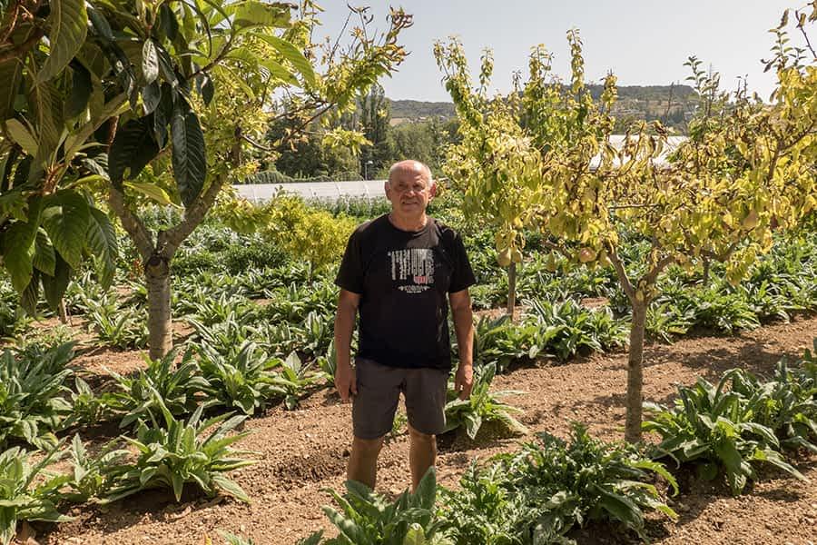 """""""Consumir alimentos de temporada no es difícil haciendo cultura y dando a la gente el producto que necesita"""". Mariano Crespo Luquin. 67 años. Estella-Lizarra."""