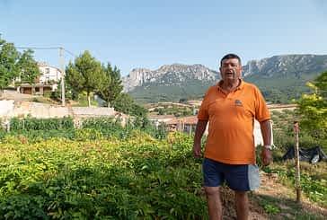 """""""Aunque no riegue, bajo todos los días, normalmente a la hora de la fresca"""". Jesús García Fernández. 67 años. Torralba del Río."""
