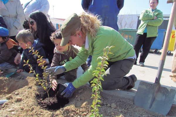 Nueva vegetación en el Día del Árbol