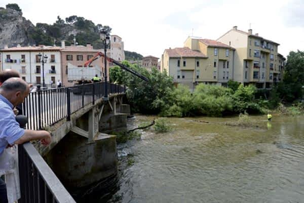 Retiran un fresnodel cauce del Ega  a la altura del Puente del Azucarero
