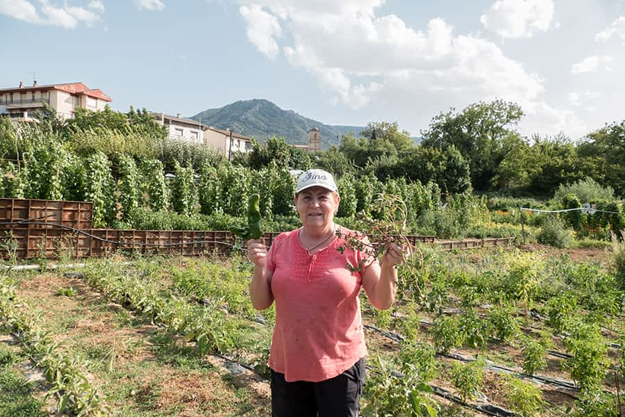 """""""Los tomates de aquí me los parto para cenar y para mí es como jabugo"""". Fina Serrano Melero. 72 años. Ayegui."""