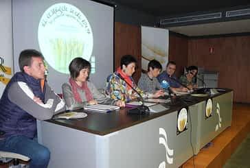 Apoyo del comercio local al Espárrago de Navarra