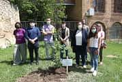 Plantación simbólica de un olmo en el Día Mundial del Medio Ambiente