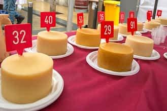 Candidatos al queso ganador.