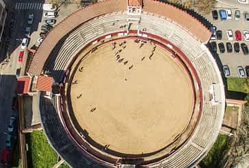 La plaza de toros se abre como lugar de esparcimiento para perros