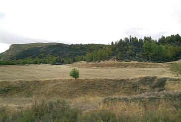 Un incendio quema 9,5 hectáreas de pinar en el término municipal de Cárcar