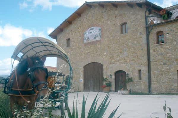 Premiados varios vinos de dos bodegas de Tierra Estella