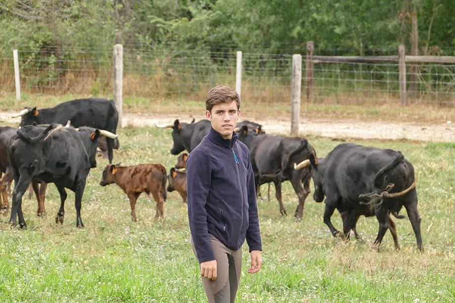 """ENTREVISTA. Guillermo Hermoso de Mendoza. Rejoneador. """"Me debo centrar en la técnica, en entender muchas cosas del caballo y en no caer en defectos que me pasen factura"""""""